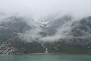 Regrowth, Glacier Bay, Alaska